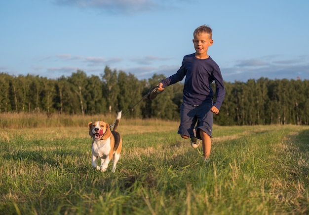 自然の中で夏にひもにつないでビーグル犬と一緒に走っているヨーロッパの少年