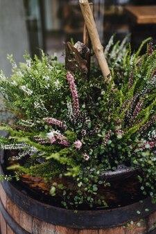 ヨーロッパの都市は、樽の中にさまざまな花や植物で飾られています。