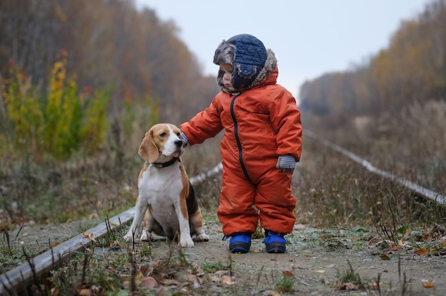 European year old boy and beagle dog in autumn forest