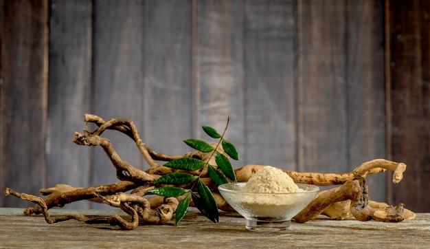 Eurycoma longifolia 잭, 말린 뿌리, 녹색 잎 및 오래 된 나무 배경에 분말.