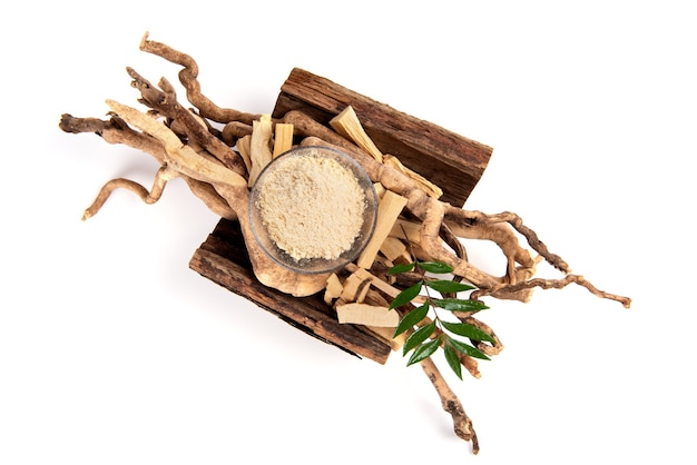 Eurycoma longifolia jack,dried roots ,green leaves and powder isolated on white background.top view ,flat lay.