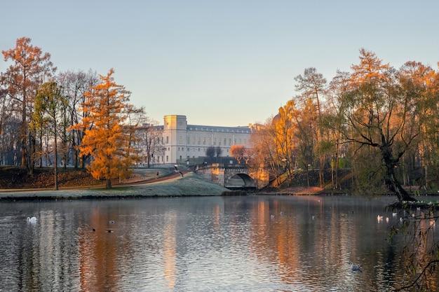 白鳥と海岸に大宮殿がある公園の夜の秋の景色。ガッチナ。ロシア。