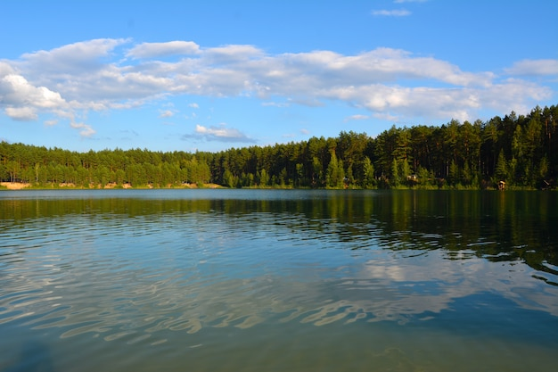 Evening on the lake in a pine forest. blue lakes in chernihiv region, ukraine