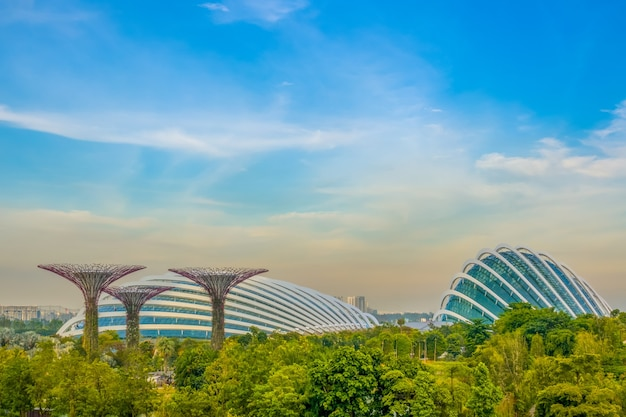 Evening singapore. garden by the bay with superflowers and flower dome
