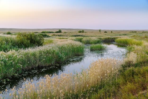 Вечерний летний пейзаж со степной рекой