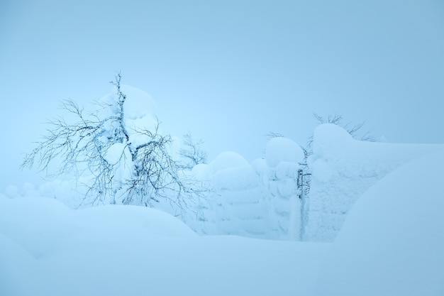 Evening winter field. bush and fence, almost invisible due to the large amount of snow