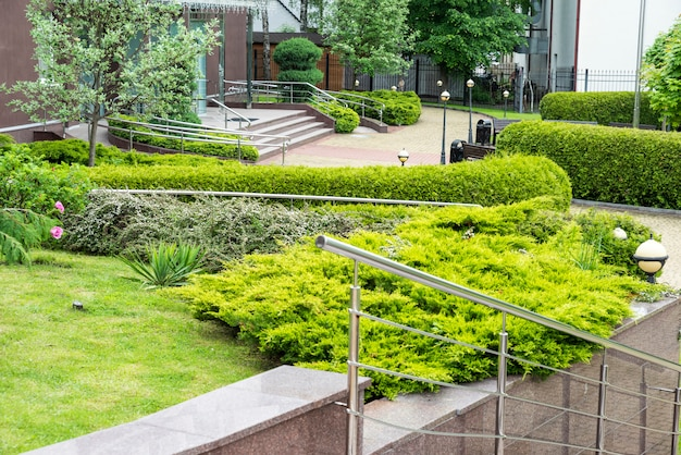 Evergreen shrubs in landscaping next to steps and rails