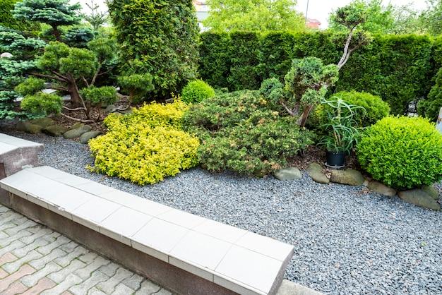 Вечнозеленые растения с гравием в декоре клумбы в ландшафтном дизайне