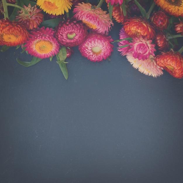 Everlasting flowers border on black stone