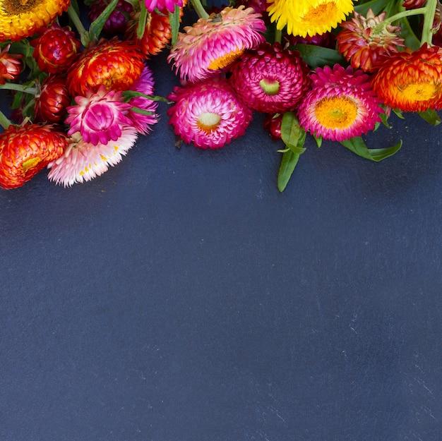 검은 돌 복사 공간에 영원한 꽃 테두리