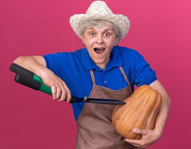 コピースペースとピンクの壁に分離されたガーデニングはさみとカボチャを保持しているガーデニング帽子をかぶっている興奮した年配の女性の庭師