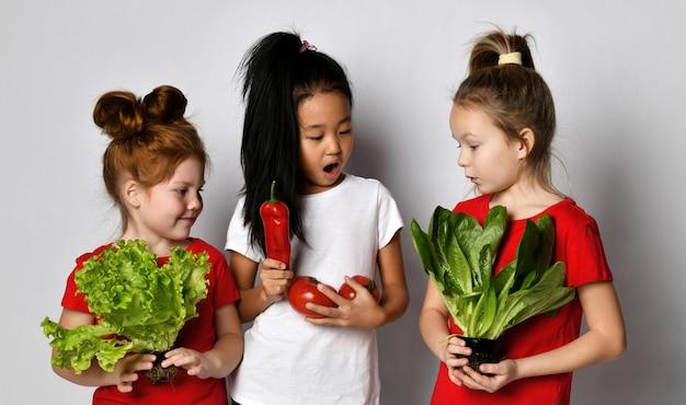 さまざまな国籍の興奮した女の子が新鮮なサラダの材料を保ち、カメラを見ています。灰色の背景にポーズをとる感情的な表情を持つ子供たち。健康食品のコンセプト。