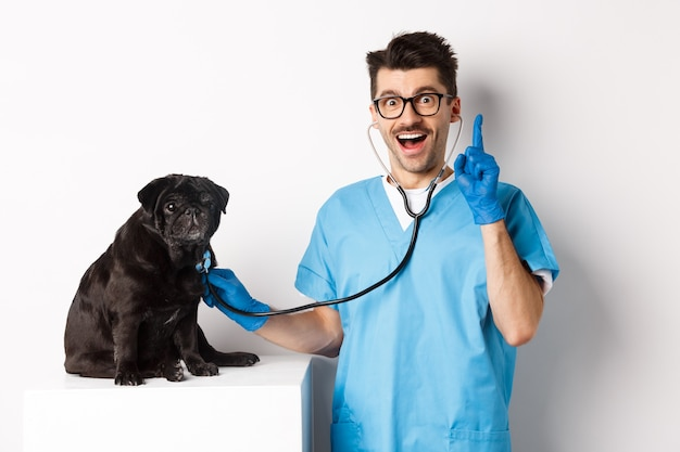 Excited male doctor veterinarian having an idea while examining cute pug dog with stethoscope, raising finger in eureka sign, white.