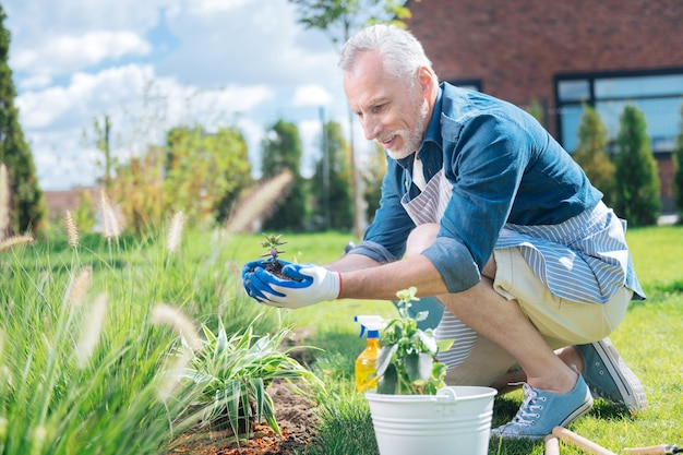 Excited man. mature grey-haired man feeling extremely excited and cheerful while planting flower for the first time