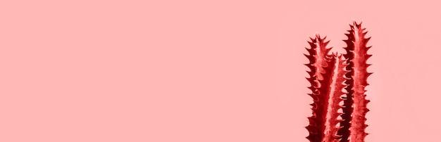 ピンク、バナーの背景にエキゾチックなサボテン