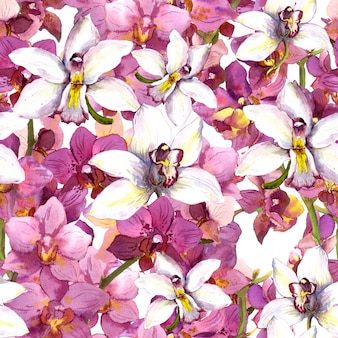 エキゾチックな花柄-熱帯の蘭の花のシームレスな背景