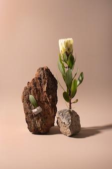 ベージュの背景に影と石のエキゾチックな花のプロテアは、ポスターの最小限の花の計画をクローズアップ...