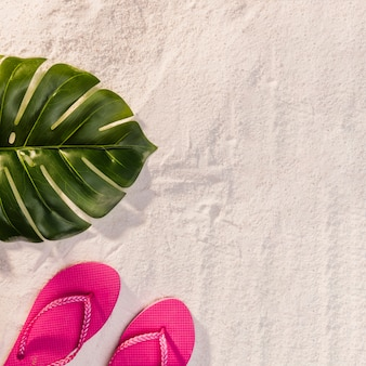 Exotic tree leaf and red flip flops