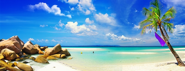 Exotic tropical beach scenery. white sand and turquoise sea