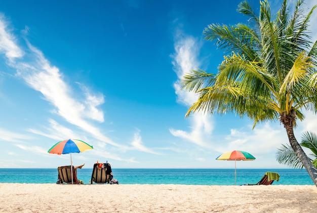 이국적인 열대 해변