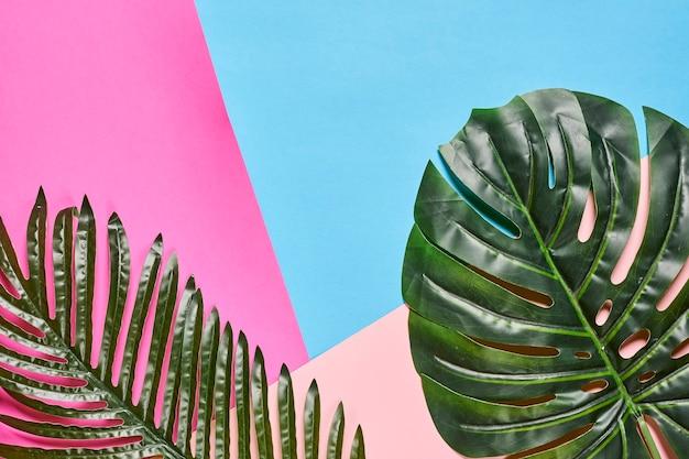 화려한 배경 여름 배경에 이국적인 열대 잎 야자수와 함께 창조적 인 여름 배경