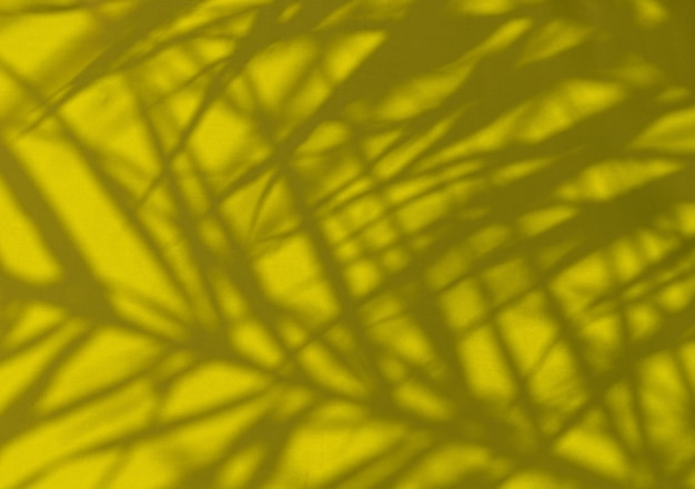 Exotic tropical palm branches on brigth yellow umbrella