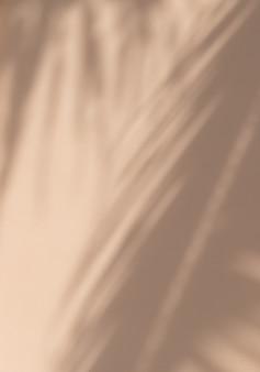淡いパステルベージュの背景にエキゾチックな熱帯のヤシの枝