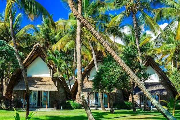 エキゾチックな熱帯の休暇-ヤシの木の下のバンガロー。モーリシャス島