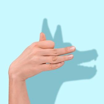 파란 배경에 인간 손 뒤에 있는 개의 기대와 현실 그림자