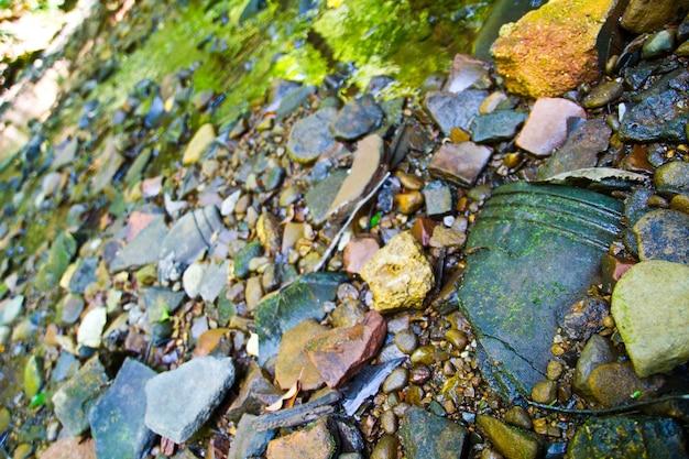 露出した岩だらけの川床と土手
