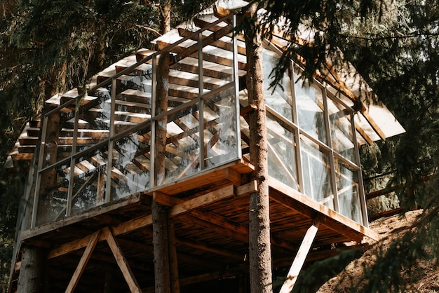 Exterior of the tree house. wooden veranda with glass walls in the forest. treehouse outdoors, sunny summer day.
