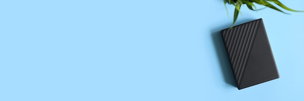 Внешний жесткий диск черного цвета и зеленого растения на синем фоне. место для текста. знамя