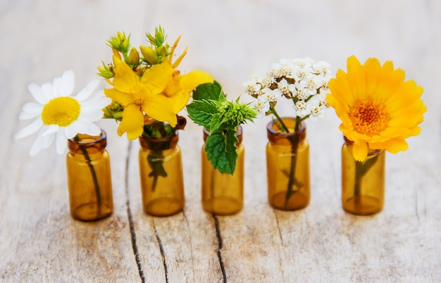 Extracts of herbs in small bottles. selective focus.