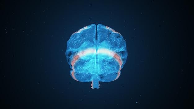 Extraordinary brain activity
