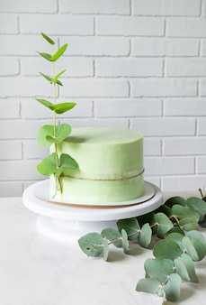 Extraordinary festive green cake decorated with a sprig of eucalyptus. copy space.