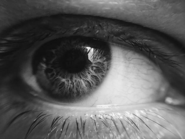 Экстремальный крупным планом черно-белое изображение глаза