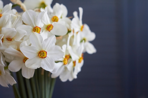 Extreme close-up bouquet of many white daffodils in glass vase on table with beige linen tablecloth