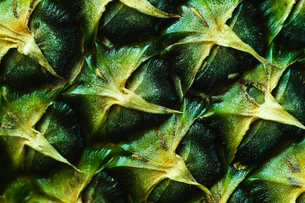 Extreme close-up of a pineapple peel