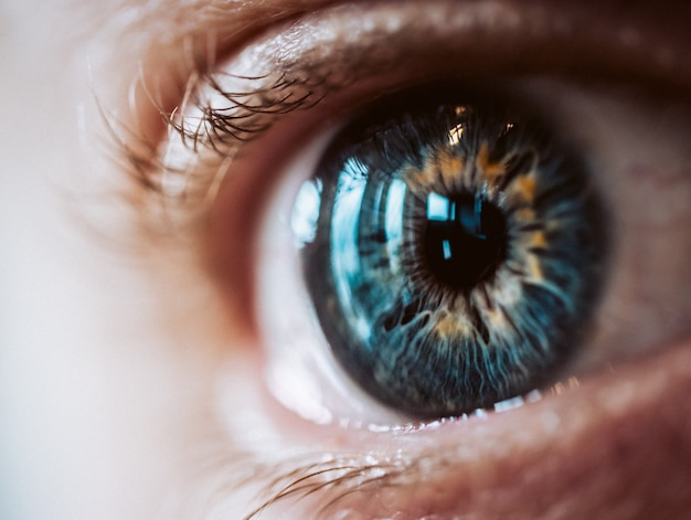 Чрезвычайно крупный план увеличенного человеческого глаза с красивыми цветами