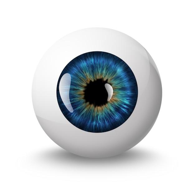 白い背景の上の影と眼球