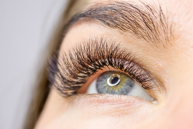 Eyelash extension procedure. woman eye with long false eyelashes. beauty and fashion