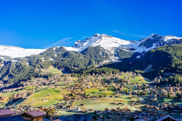 Fabulous alpine wooden houses, green fields and famous touristic grindelwald town with mount jungfrau, bernese oberland, switzerland, europe