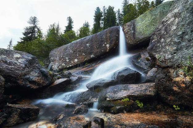 멋진 산 스트림, 무성한 녹지 및 주변 꽃. 산에서 샘물을 해동. 높은 산, 고산 초원의 마법의 전망