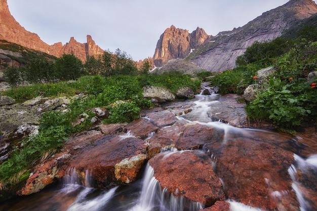 Fabulous mountain streams, lush greenery and flowers around