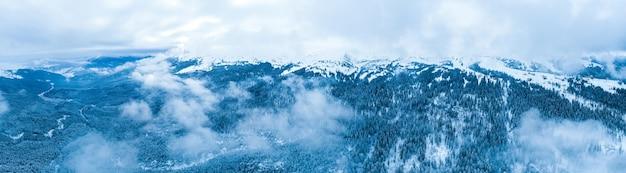 曇った霧の天気の冬に山の斜面に生えているトウヒの木の素晴らしい雪に覆われたパノラマ。ウィンタースポーツとスキーリゾートのコンセプト