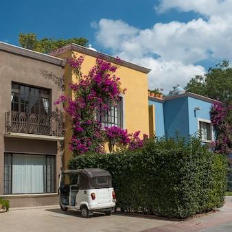 Facade of houses, zona centro, san miguel de allende, guanajuato, mexico