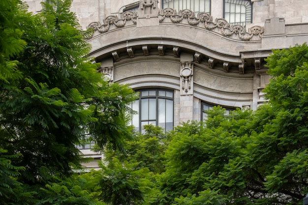 正面に窓と木があるメキシコシティの美術のファサード