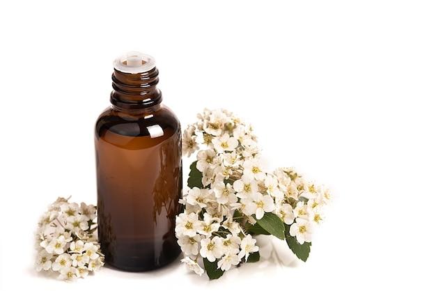 Масло для лица, сыворотка или цветочное масло. натуральная косметика. белые цветы на белом фоне. спа-процедура.