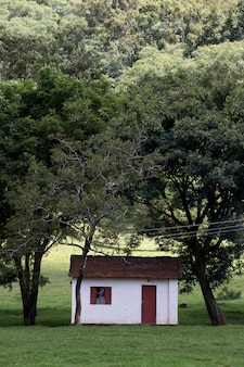 Facilities of a typical farm of the sao paulo state