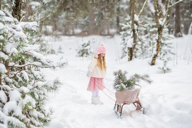 Fairy tale a beautiful girl in a white fur coat rolls a sled in a winter snow covered forest with christmas trees